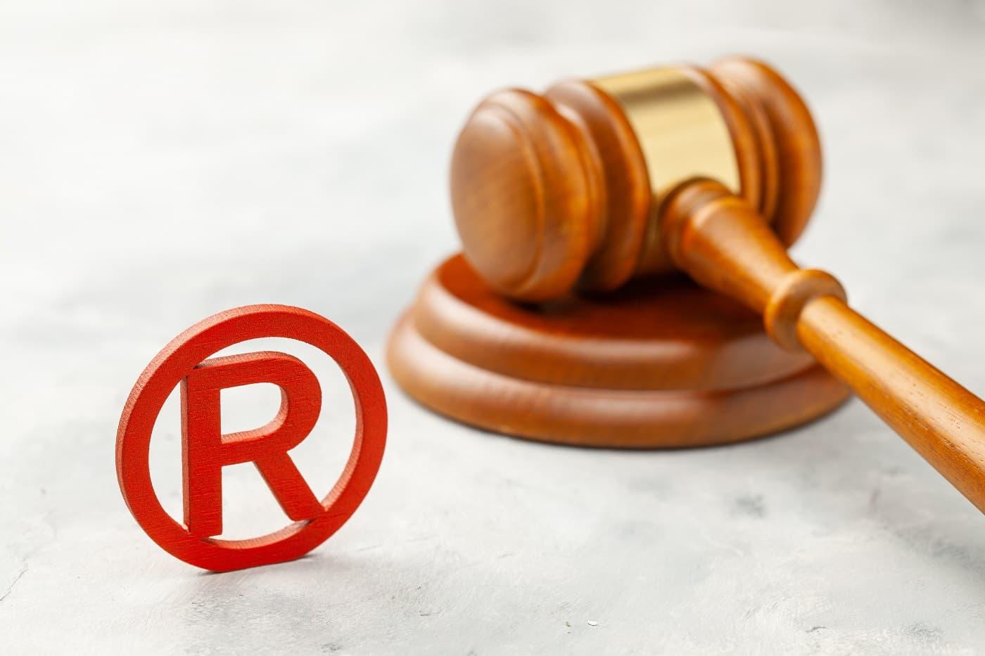 Litigio registro de propiedad intelectual