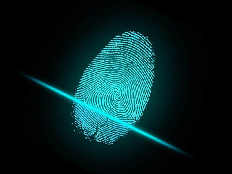 id management y gestion de identidades